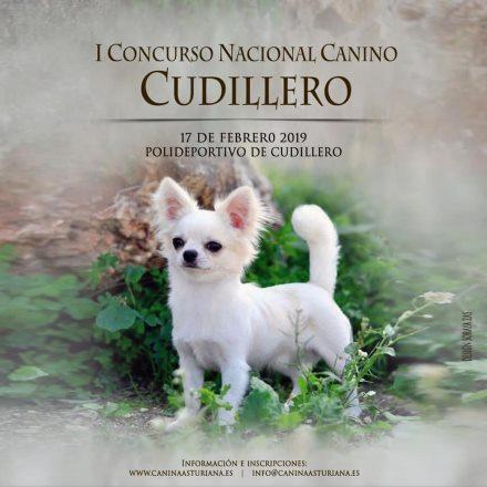 I Concurso Nacional Canino de Cudillero